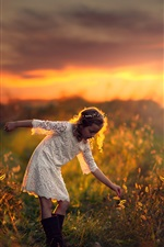 Summer, child, girl, grass, sunset