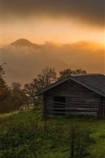 Sunrise, alpine, trees, house, clouds, fog