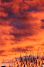 Preview iPhone wallpaper Sunset, red sky, clouds, twigs