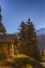 Switzerland, Alps, house, mountains, trees, sunshine
