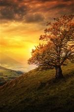 iPhone fondos de pantalla Suiza, ladera, montañas, árboles, nubes, ciudad, puesta de sol