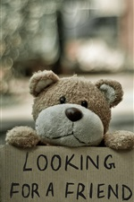 Preview iPhone wallpaper Teddy bear looking for a friend