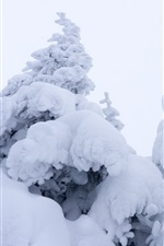 Preview iPhone wallpaper Thick snow, spruce, winter