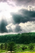 Preview iPhone wallpaper Trees, clouds, sky, sun rays, nature landscape