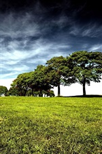 Preview iPhone wallpaper Trees, green grass, clouds, sky