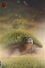 Preview iPhone wallpaper Turtle, grass, tree, child, creative design