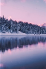 Preview iPhone wallpaper Washington, mountains, winter, forest, snow, Gold Creek Pond