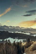 Preview iPhone wallpaper Winter, snow, mountains, trees, dusk