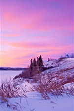 Preview iPhone wallpaper Winter, snow, sunset, river, windmill