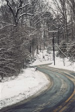 Preview iPhone wallpaper Winter, trees, snow, road, power lines