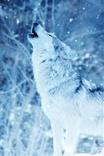 Preview iPhone wallpaper Wolf howl, predator, winter, snow