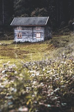 Preview iPhone wallpaper Wood huts, wildflowers, path, nature