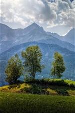 Áustria, árvores, montanhas, grama, nuvens, luz do sol