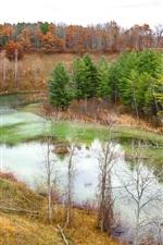 Herbst, Fluss, Bäume, Hang, Natur