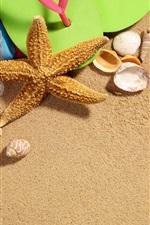 iPhone обои Пляж, морская звезда, ракушка, песок, флип-флоп
