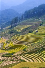 Preview iPhone wallpaper Beautiful countryside, hills, field, rice terraces, houses