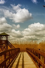 Preview iPhone wallpaper Bridge, gazebo, grass, clouds