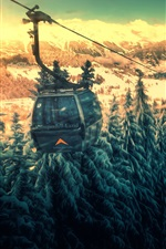 Cable car, mountains, funicular, forest, snow