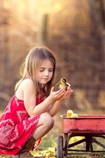Cute girl and ducklings