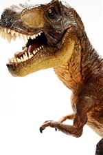 Preview iPhone wallpaper Dinosaur, white background