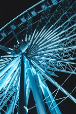 Ferris wheel illumination, night view