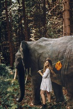 Preview iPhone wallpaper Girl and elephant in the forest