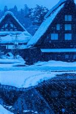 Preview iPhone wallpaper Gokayama, Shirakawa-go, Japan, Honshu Island, winter, snowing, houses