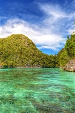 Preview iPhone wallpaper Indonesia, Laguna, lake, trees, tropical