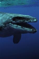 Kronosaurus, animal pré-histórico, mar, subaquático