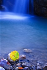 Preview iPhone wallpaper Leaf, stones, waterfall, water