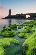 iPhone fondos de pantalla Faro, musgo, piedras, mar