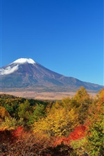 Preview iPhone wallpaper Mount Fuji, trees, autumn, Japan