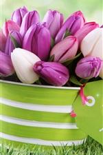 iPhone fondos de pantalla Rosa y tulipanes blancos, flores, cubo
