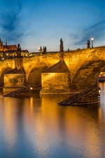 iPhone fondos de pantalla Praga, Vltava, República Checa, Charles Bridge, río, noche, luces