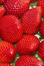 Preview iPhone wallpaper Ripe strawberries, berries, fruit