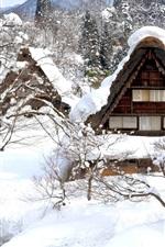 Preview iPhone wallpaper Shirakawa-go, Japan, winter, snow, trees, house