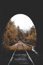 Preview iPhone wallpaper Tunnel, railway, trees, autumn