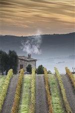 Preview iPhone wallpaper Tuscany, Italy, countryside, fields, house