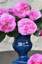 Preview iPhone wallpaper Vase, pink rose, home flowers