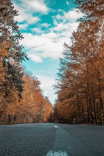 Preview iPhone wallpaper Autumn, road, forest, trees