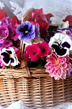 Basket, colorful flowers