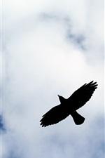 Preview iPhone wallpaper Bird flight silhouette, clouds, sky