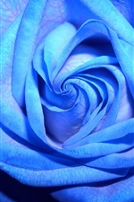 Preview iPhone wallpaper Blue rose close-up