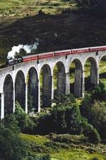 Bridge, train, railway, trees, grass