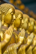 Preview iPhone wallpaper Buddha statues, gold color