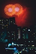 City night, fogos de artifício, feriado