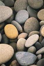 Cobblestones, stones