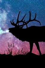Preview iPhone wallpaper Deer, silhouette, starry, galaxy, stars, night