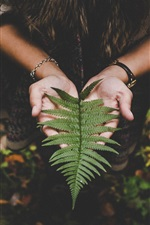 Preview iPhone wallpaper Fern leaf on hands