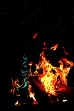 Preview iPhone wallpaper Fire, flame, firewood, darkness